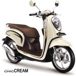 Chic Cream