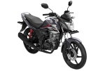 Verza 150 CW Tough Silver
